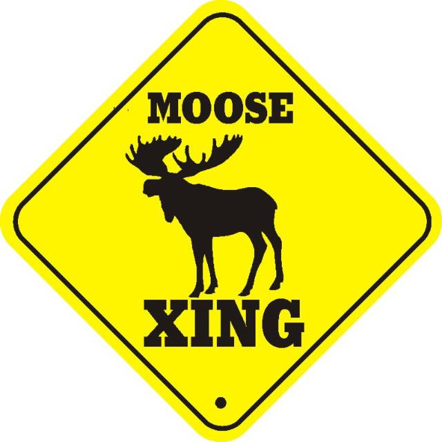 MOOSE%20CROSSING